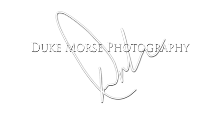 Duke Morse Photography poster image